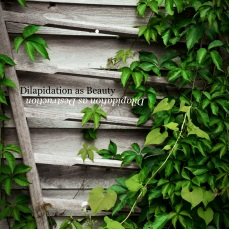 Dilapidation as Beauty/Dilapidation as Destruction